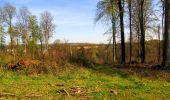 Trail Walk LONGPONT - en forêt de Retz_45_Longpont_la Pierre Fortiere_AR - Photo 117