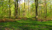 Trail Walk LONGPONT - en forêt de Retz_45_Longpont_la Pierre Fortiere_AR - Photo 40
