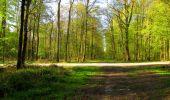 Trail Walk LONGPONT - en forêt de Retz_45_Longpont_la Pierre Fortiere_AR - Photo 35