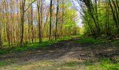 Trail Walk LONGPONT - en forêt de Retz_45_Longpont_la Pierre Fortiere_AR - Photo 69