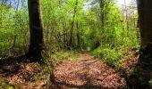 Trail Walk LONGPONT - en forêt de Retz_45_Longpont_la Pierre Fortiere_AR - Photo 196