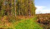 Trail Walk LONGPONT - en forêt de Retz_45_Longpont_la Pierre Fortiere_AR - Photo 178