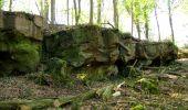 Trail Walk LONGPONT - en forêt de Retz_45_Longpont_la Pierre Fortiere_AR - Photo 106
