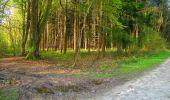 Trail Walk LONGPONT - en forêt de Retz_45_Longpont_la Pierre Fortiere_AR - Photo 1