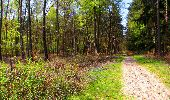 Trail Walk LONGPONT - en forêt de Retz_45_Longpont_la Pierre Fortiere_AR - Photo 185