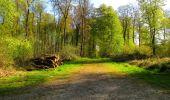 Trail Walk LONGPONT - en forêt de Retz_45_Longpont_la Pierre Fortiere_AR - Photo 76