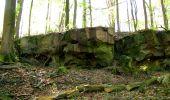 Trail Walk LONGPONT - en forêt de Retz_45_Longpont_la Pierre Fortiere_AR - Photo 107