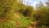 Trail Walk LONGPONT - en forêt de Retz_45_Longpont_la Pierre Fortiere_AR - Photo 150