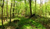 Trail Walk LONGPONT - en forêt de Retz_45_Longpont_la Pierre Fortiere_AR - Photo 214