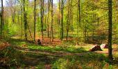 Trail Walk LONGPONT - en forêt de Retz_45_Longpont_la Pierre Fortiere_AR - Photo 142