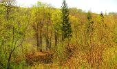Trail Walk LONGPONT - en forêt de Retz_45_Longpont_la Pierre Fortiere_AR - Photo 212