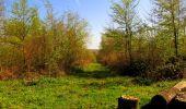 Trail Walk LONGPONT - en forêt de Retz_45_Longpont_la Pierre Fortiere_AR - Photo 82