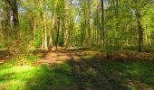 Trail Walk LONGPONT - en forêt de Retz_45_Longpont_la Pierre Fortiere_AR - Photo 39