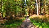 Trail Walk LONGPONT - en forêt de Retz_45_Longpont_la Pierre Fortiere_AR - Photo 182