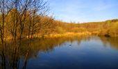 Trail Walk LONGPONT - en forêt de Retz_45_Longpont_la Pierre Fortiere_AR - Photo 62