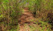Trail Walk LONGPONT - en forêt de Retz_45_Longpont_la Pierre Fortiere_AR - Photo 152