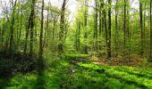 Trail Walk LONGPONT - en forêt de Retz_45_Longpont_la Pierre Fortiere_AR - Photo 41