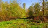 Trail Walk LONGPONT - en forêt de Retz_45_Longpont_la Pierre Fortiere_AR - Photo 81
