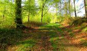 Trail Walk LONGPONT - en forêt de Retz_45_Longpont_la Pierre Fortiere_AR - Photo 74