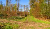 Trail Walk LONGPONT - en forêt de Retz_45_Longpont_la Pierre Fortiere_AR - Photo 127