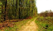Trail Walk LONGPONT - en forêt de Retz_45_Longpont_la Pierre Fortiere_AR - Photo 189