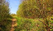 Trail Walk LONGPONT - en forêt de Retz_45_Longpont_la Pierre Fortiere_AR - Photo 148