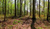 Trail Walk LONGPONT - en forêt de Retz_45_Longpont_la Pierre Fortiere_AR - Photo 159