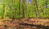 Trail Walk LONGPONT - en forêt de Retz_45_Longpont_la Pierre Fortiere_AR - Photo 163