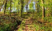 Trail Walk LONGPONT - en forêt de Retz_45_Longpont_la Pierre Fortiere_AR - Photo 116