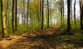 Trail Walk LONGPONT - en forêt de Retz_45_Longpont_la Pierre Fortiere_AR - Photo 134