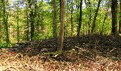 Trail Walk LONGPONT - en forêt de Retz_45_Longpont_la Pierre Fortiere_AR - Photo 98