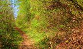 Trail Walk LONGPONT - en forêt de Retz_45_Longpont_la Pierre Fortiere_AR - Photo 151
