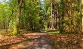 Trail Walk LONGPONT - en forêt de Retz_45_Longpont_la Pierre Fortiere_AR - Photo 184