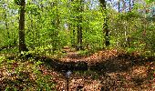 Trail Walk LONGPONT - en forêt de Retz_45_Longpont_la Pierre Fortiere_AR - Photo 198