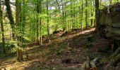 Trail Walk LONGPONT - en forêt de Retz_45_Longpont_la Pierre Fortiere_AR - Photo 100