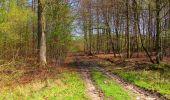 Trail Walk LONGPONT - en forêt de Retz_45_Longpont_la Pierre Fortiere_AR - Photo 129