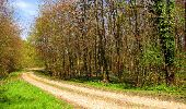 Trail Walk LONGPONT - en forêt de Retz_45_Longpont_la Pierre Fortiere_AR - Photo 136