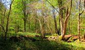 Trail Walk LONGPONT - en forêt de Retz_45_Longpont_la Pierre Fortiere_AR - Photo 195