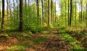 Trail Walk LONGPONT - en forêt de Retz_45_Longpont_la Pierre Fortiere_AR - Photo 73