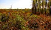 Trail Walk LONGPONT - en forêt de Retz_45_Longpont_la Pierre Fortiere_AR - Photo 186