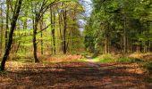 Trail Walk LONGPONT - en forêt de Retz_45_Longpont_la Pierre Fortiere_AR - Photo 183