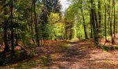 Trail Walk LONGPONT - en forêt de Retz_45_Longpont_la Pierre Fortiere_AR - Photo 180