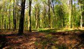 Trail Walk LONGPONT - en forêt de Retz_45_Longpont_la Pierre Fortiere_AR - Photo 37