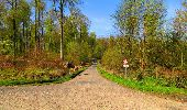 Trail Walk LONGPONT - en forêt de Retz_45_Longpont_la Pierre Fortiere_AR - Photo 78