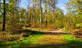 Trail Walk LONGPONT - en forêt de Retz_45_Longpont_la Pierre Fortiere_AR - Photo 80
