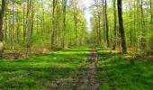 Trail Walk LONGPONT - en forêt de Retz_45_Longpont_la Pierre Fortiere_AR - Photo 38