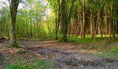 Trail Walk LONGPONT - en forêt de Retz_45_Longpont_la Pierre Fortiere_AR - Photo 5