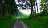Trail Walk LONGPONT - en forêt de Retz_45_Longpont_la Pierre Fortiere_AR - Photo 10