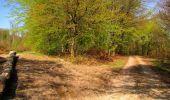 Trail Walk LONGPONT - en forêt de Retz_45_Longpont_la Pierre Fortiere_AR - Photo 132
