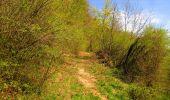 Trail Walk LONGPONT - en forêt de Retz_45_Longpont_la Pierre Fortiere_AR - Photo 149